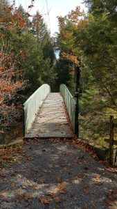 Bridge over a creek into the forest